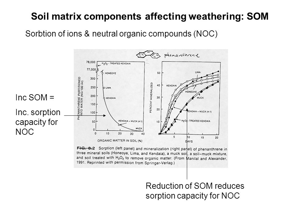 Soil matrix components affecting weathering: SOM Sorbtion of ions & neutral organic compounds (NOC) Inc SOM = Inc.