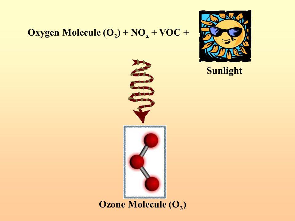 Oxygen Molecule (O 2 ) + NO x + VOC + Ozone Molecule (O 3 ) Sunlight