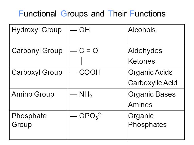 Functional Groups and Their Functions Hydroxyl Group— OHAlcohols Carbonyl Group— C = O │ Aldehydes Ketones Carboxyl Group— COOHOrganic Acids Carboxyli