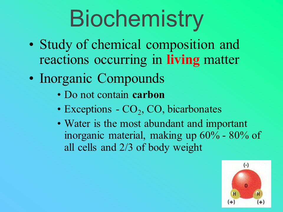 Biochemistry Study of chemical composition and reactions occurring in living matter Inorganic Compounds Do not contain carbon Exceptions - CO 2, CO, bicarbonates Water is the most abundant and important inorganic material, making up 60% - 80% of all cells and 2/3 of body weight