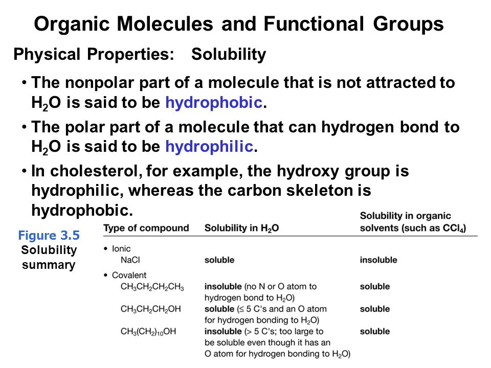 34 The nonpolar part of a molecule that is not attracted to H 2 O is said to be hydrophobic.