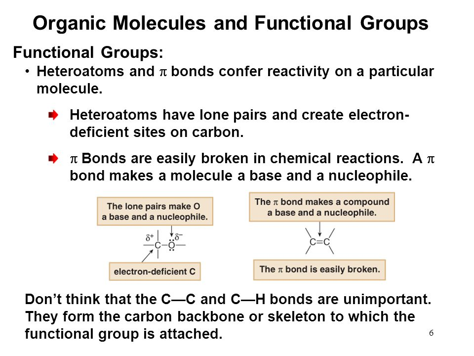 6 Functional Groups: Heteroatoms and  bonds confer reactivity on a particular molecule.