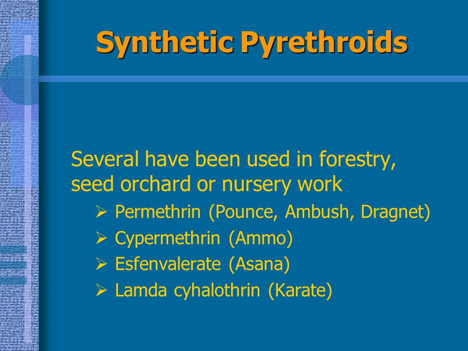 Synthetic Pyrethroids Several have been used in forestry, seed orchard or nursery work  Permethrin (Pounce, Ambush, Dragnet)  Cypermethrin (Ammo) 