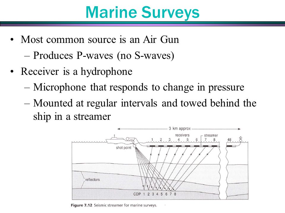 Most common source is an Air Gun –Produces P-waves (no S-waves) Receiver is a hydrophone –Microphone that responds to change in pressure –Mounted at regular intervals and towed behind the ship in a streamer Marine Surveys