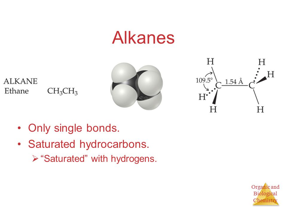 Organic and Biological Chemistry Alkanes Only single bonds.