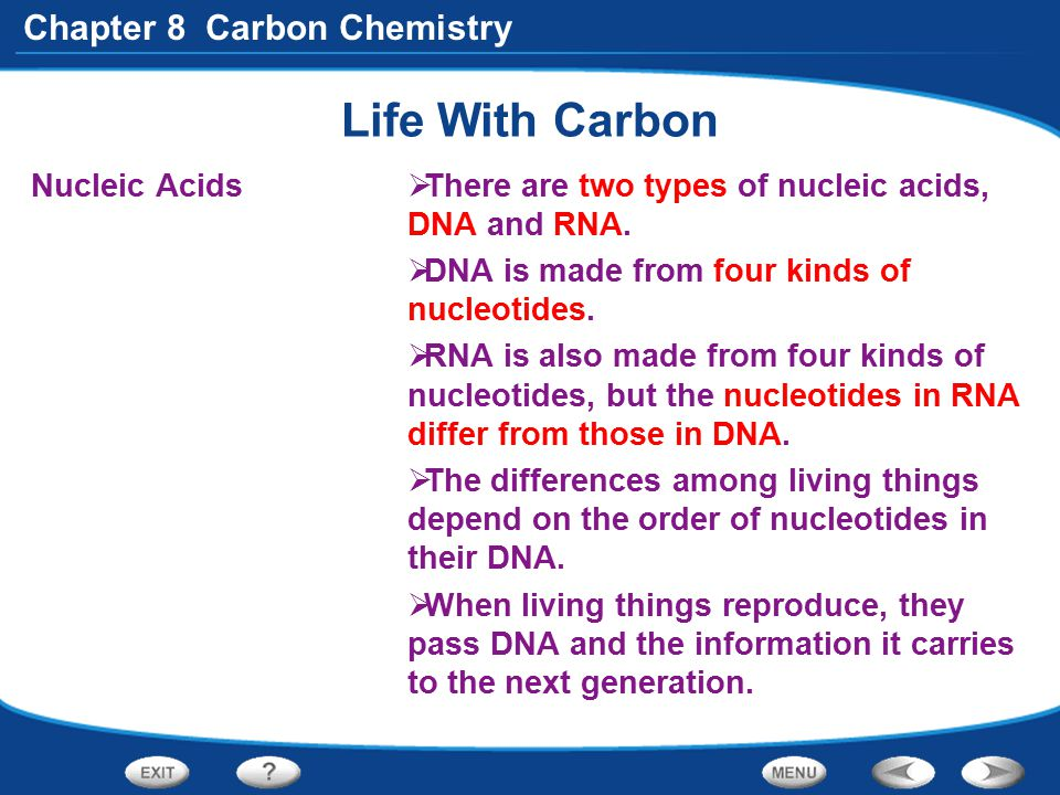 Chapter 8 Carbon Chemistry Life With Carbon Nucleic Acids  There are two types of nucleic acids, DNA and RNA.  DNA is made from four kinds of nucleo