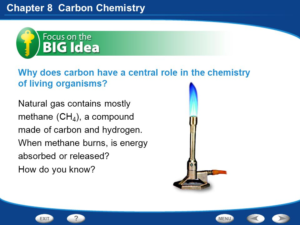 Chapter 8 Carbon Chemistry Section 1: Properties of Carbon Standard 8.6.a Students know that carbon, because of its ability to combine in many ways with itself and other elements, has a central role in the chemistry of living organisms.