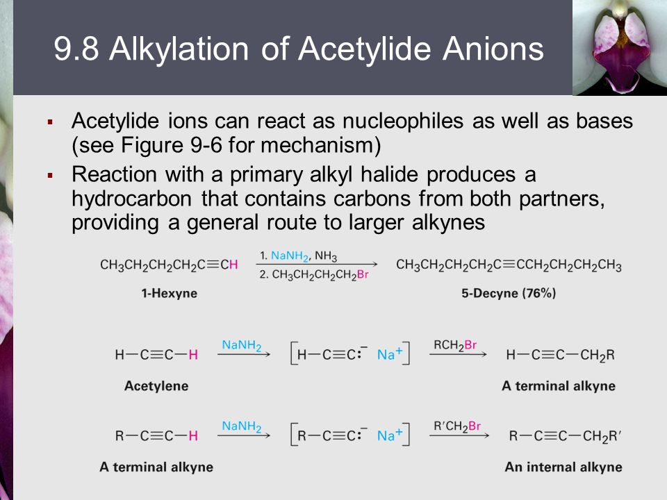  Acetylide ions can react as nucleophiles as well as bases (see Figure 9-6 for mechanism)  Reaction with a primary alkyl halide produces a hydrocarb