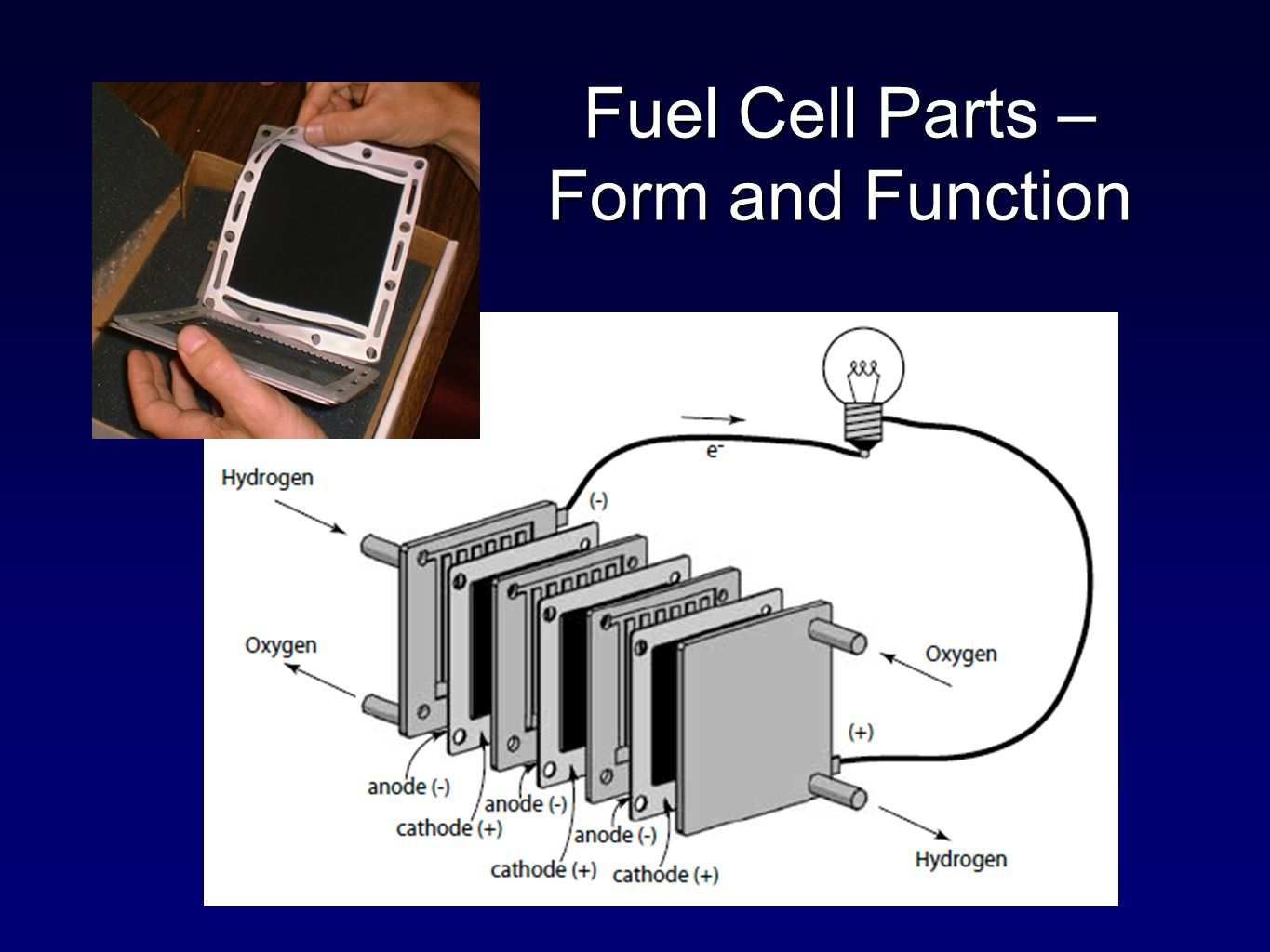 Fuel Cell Parts – Form and Function