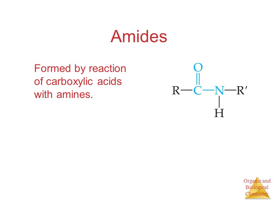 Organic and Biological Chemistry Amides Formed by reaction of carboxylic acids with amines.