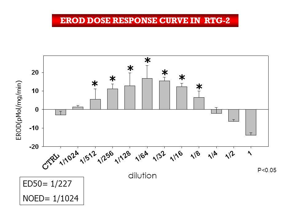 EROD DOSE RESPONSE CURVE IN RTG-2 ED50= 1/227 NOED= 1/1024 EROD(pMol/mg/min) P<0.05 * * * * * * * * Log dilución * * * * * * * CTRL dilution