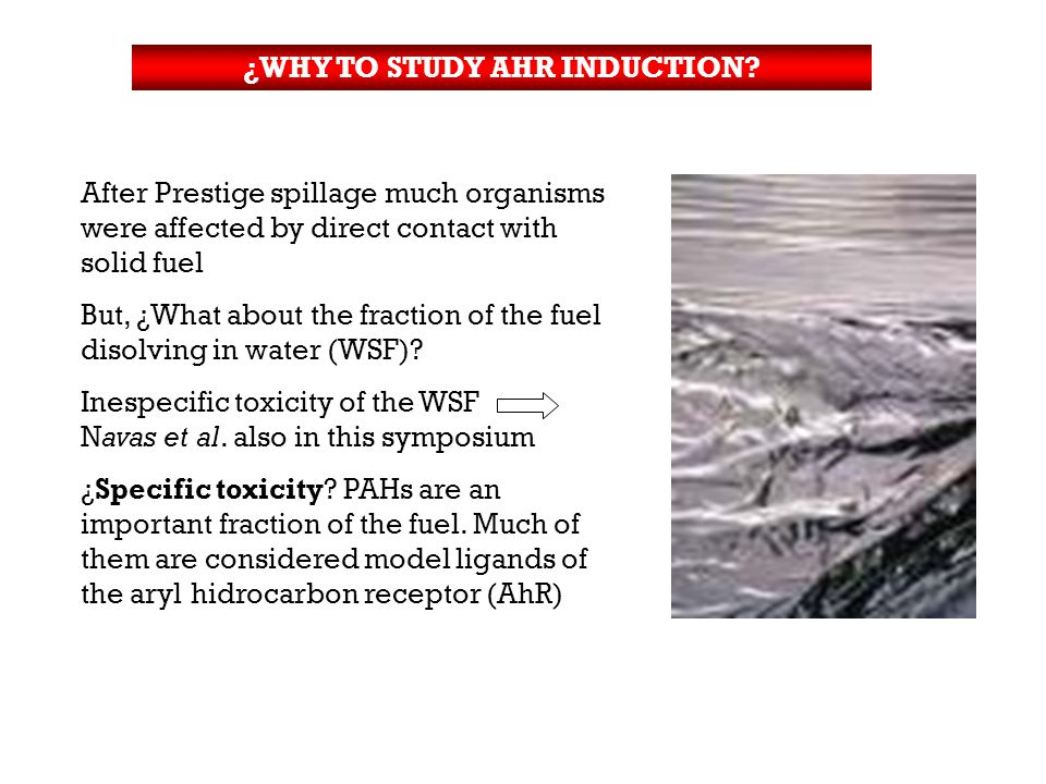 ¿WHY TO STUDY AHR INDUCTION.