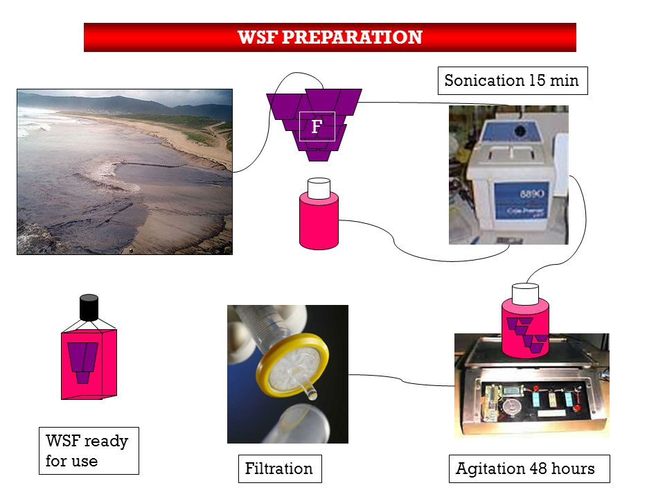 WSF PREPARATION Sonication 15 min F FiltrationAgitation 48 hours WSF ready for use