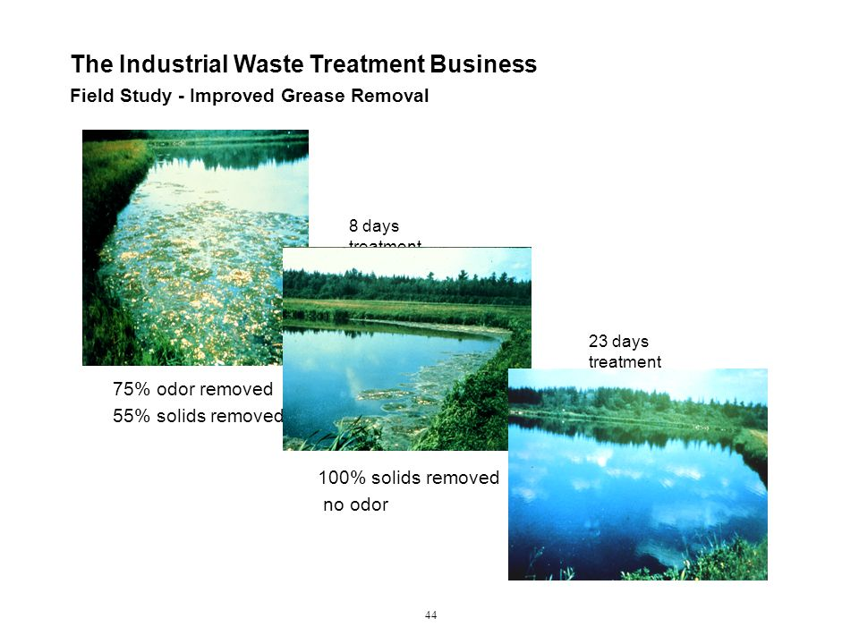 Field Study - Improved Grease Removal The Industrial Waste Treatment Business 44 75% odor removed 55% solids removed 8 days treatment 100% solids removed no odor 23 days treatment