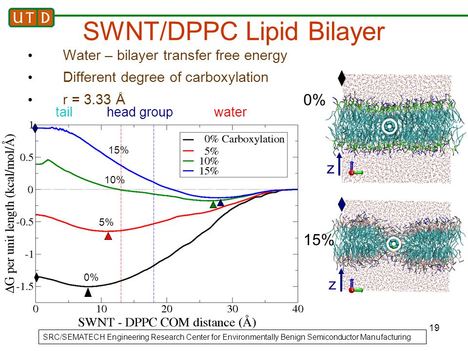 19 tailhead groupwater SWNT/DPPC Lipid Bilayer Water – bilayer transfer free energy Different degree of carboxylation r = 3.33 Å SRC/SEMATECH Engineer