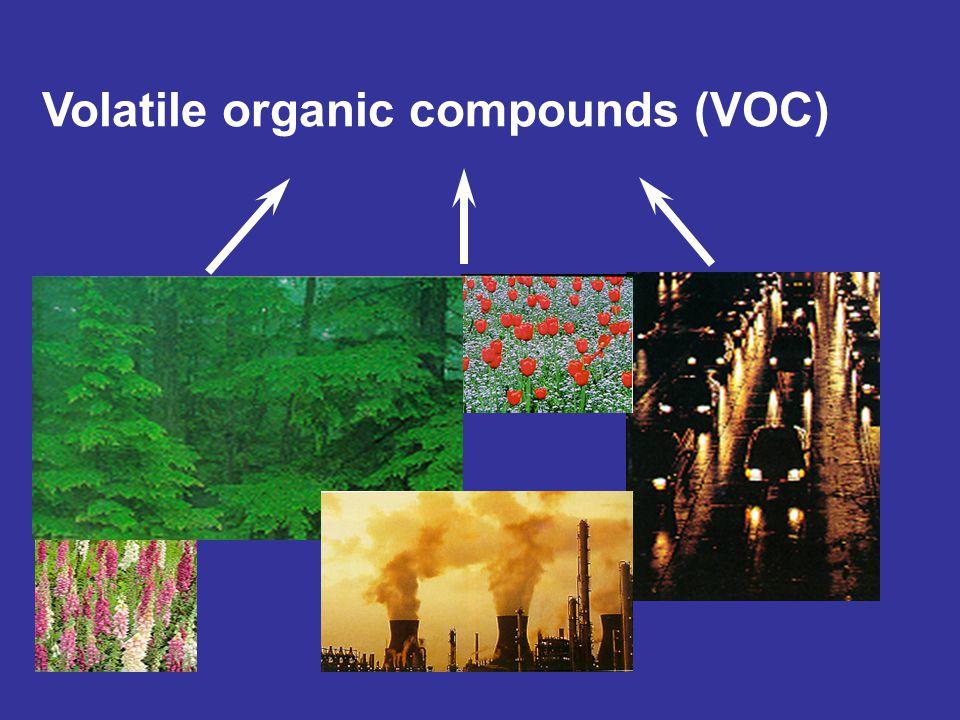 Troposphere Ozone Stratosphere Ozone mixing Sun Light 50 km 10-16 km 0 km SUNLIGHT UV: 200-330 nm UV: > 330 nm: penetration to Earth's surface Sea level NO 2 + O 2 NO + O 3 +other photochemical reactants VOC + O 2