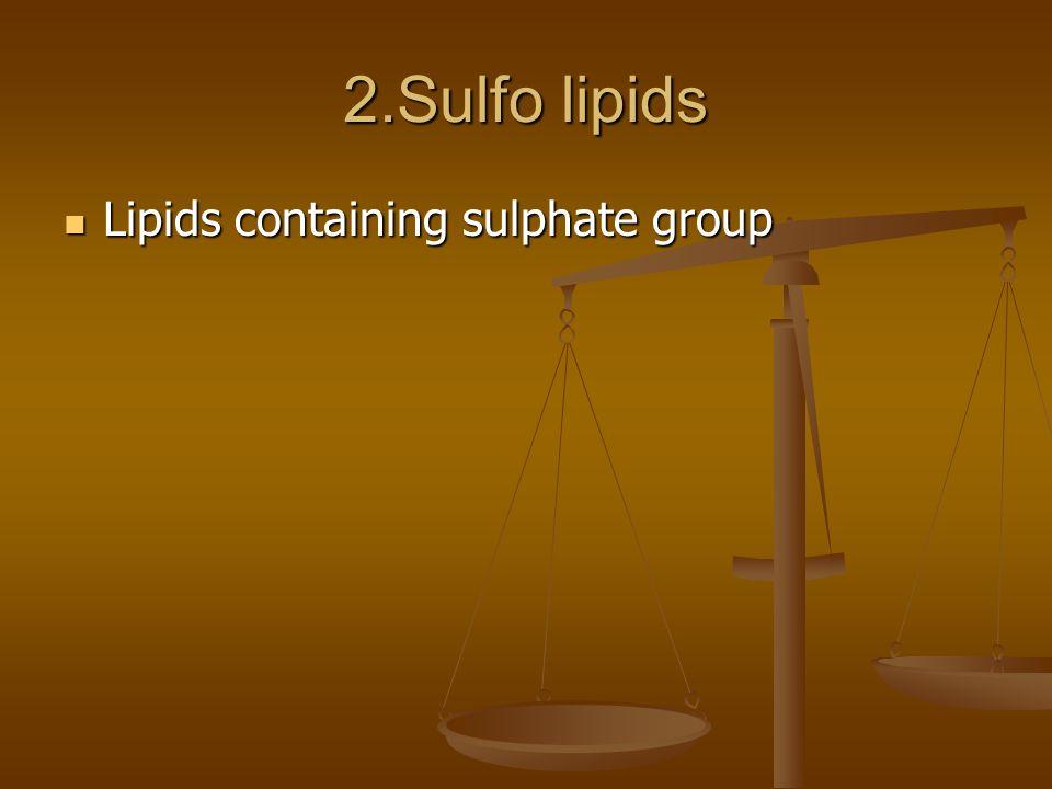 2.Sulfo lipids Lipids containing sulphate group Lipids containing sulphate group