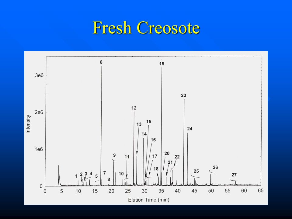 Fresh Creosote
