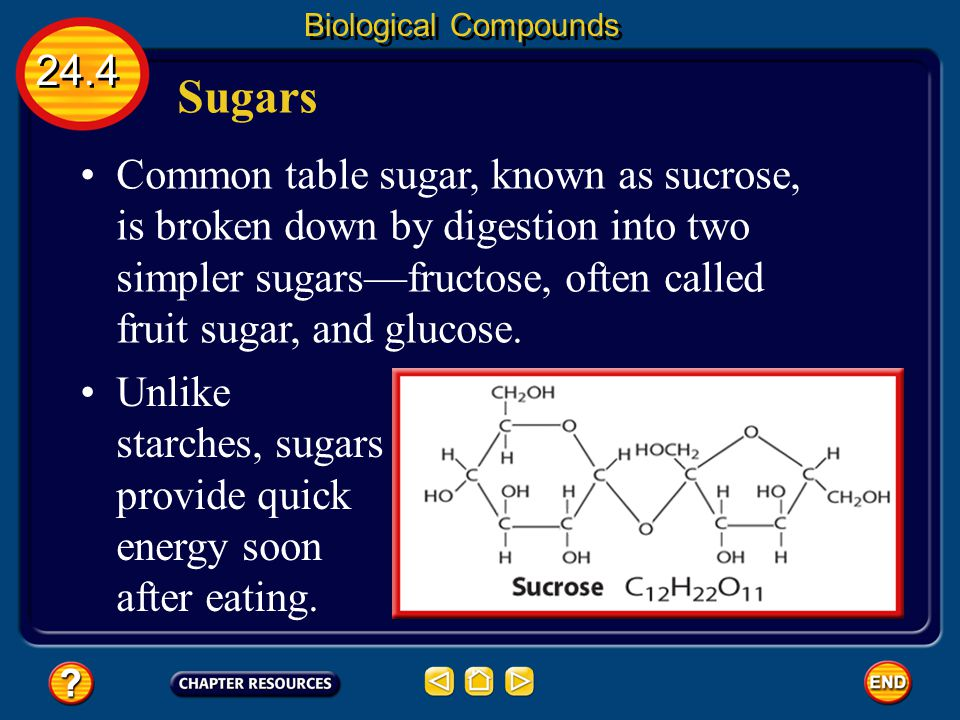 24.4 Biological Compounds Sugars Sugars are a major group of carbohydrates. The sugar glucose is found in your blood and also in many sweet foods such