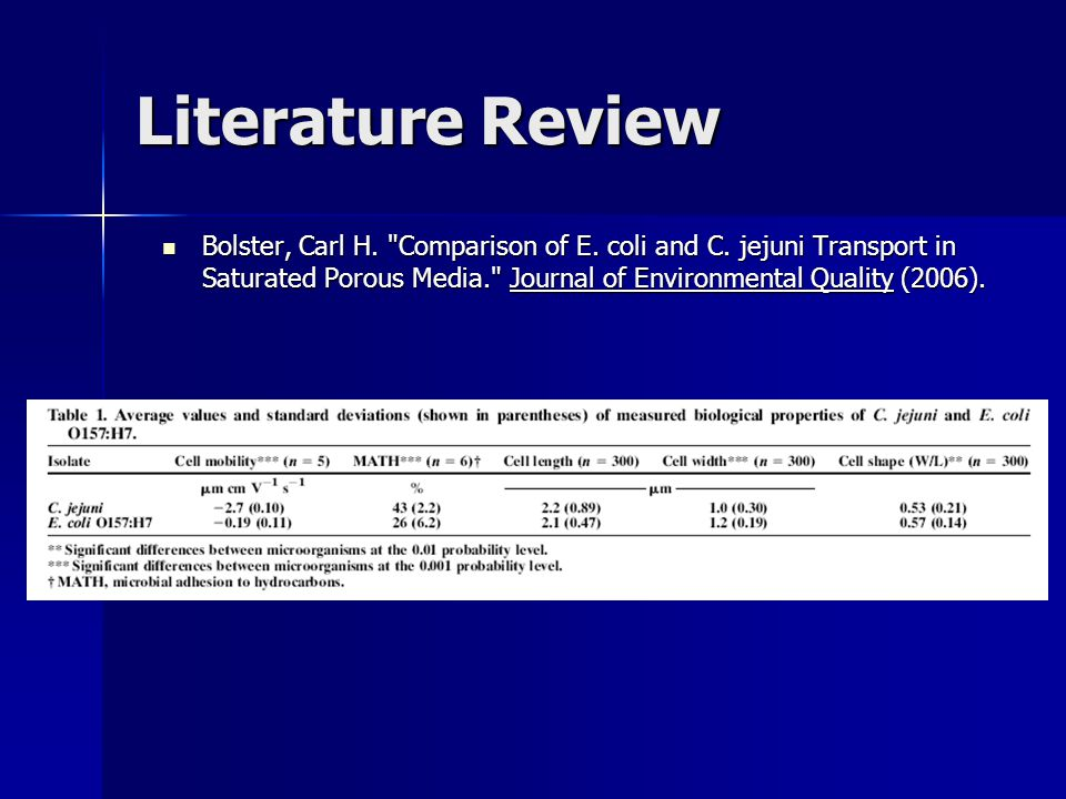 Literature Review Bolster, Carl H.