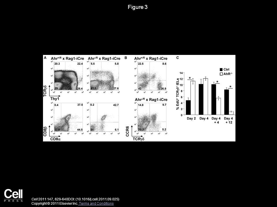 Figure 3 Cell 2011 147, 629-640DOI: (10.1016/j.cell.2011.09.025) Copyright © 2011 Elsevier Inc.