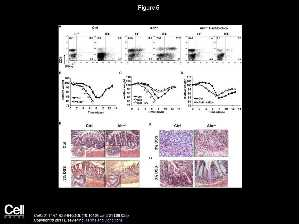 Figure 5 Cell 2011 147, 629-640DOI: (10.1016/j.cell.2011.09.025) Copyright © 2011 Elsevier Inc.