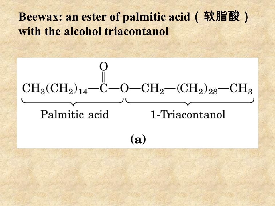 Beewax: an ester of palmitic acid (软脂酸) with the alcohol triacontanol