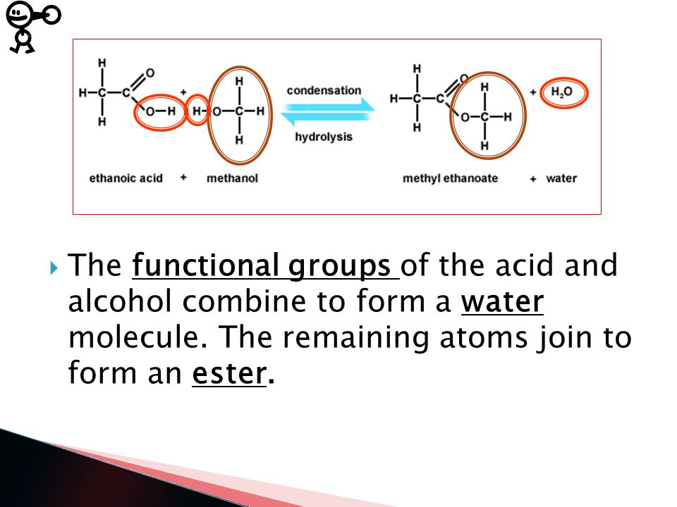 Condensation Reactions:  Involve the loss of simple molecules such as water when monomer units join.