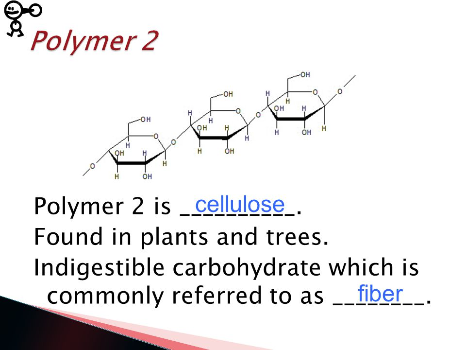 Polymer 1 is a ____________. Present in grains and vegetables.