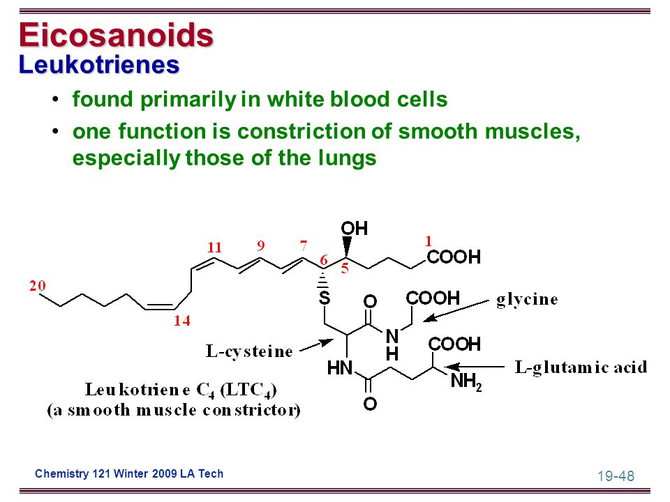 19-48 Chemistry 121 Winter 2009 LA Tech Eicosanoids Leukotrienes found primarily in white blood cells one function is constriction of smooth muscles,