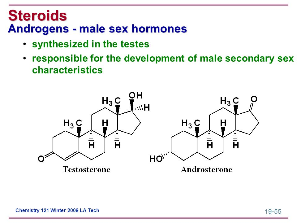 19-55 Chemistry 121 Winter 2009 LA Tech Steroids Androgens - male sex hormones synthesized in the testes responsible for the development of male secon