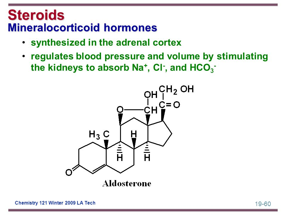 19-60 Chemistry 121 Winter 2009 LA Tech Steroids Mineralocorticoid hormones synthesized in the adrenal cortex regulates blood pressure and volume by s