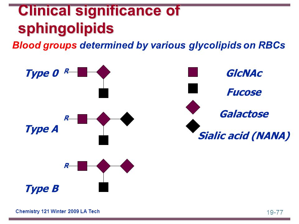 19-77 Chemistry 121 Winter 2009 LA Tech Clinical significance of sphingolipids RRRRRR Type 0 Type A Type B GlcNAc Fucose Galactose Sialic acid (NANA)