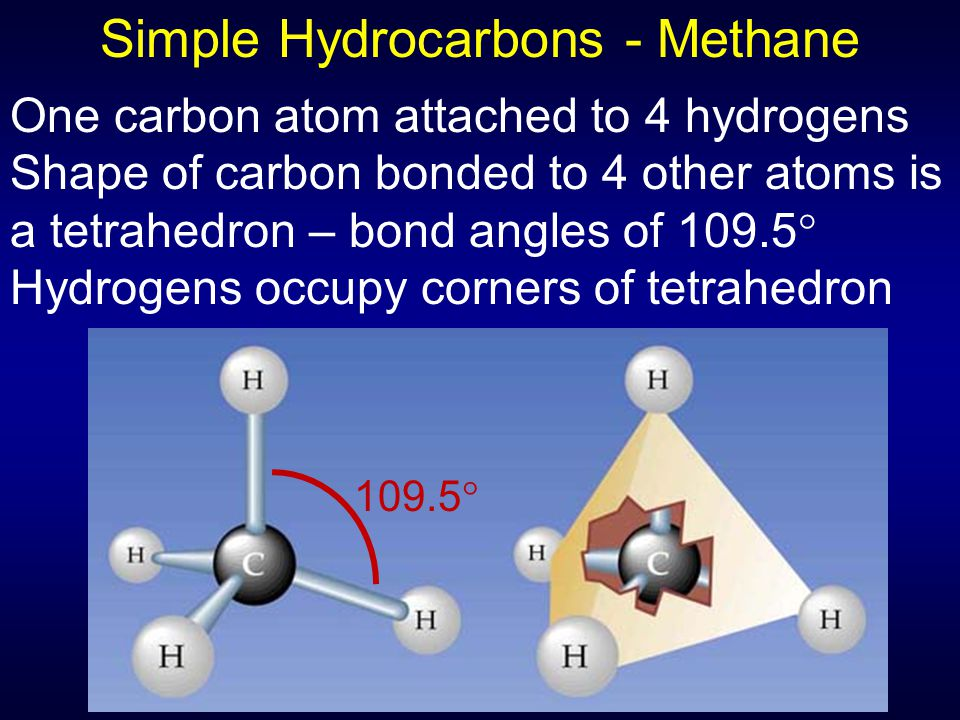Simple Hydrocarbons - Methane One carbon atom attached to 4 hydrogens Shape of carbon bonded to 4 other atoms is a tetrahedron – bond angles of 109.5  Hydrogens occupy corners of tetrahedron 109.5 
