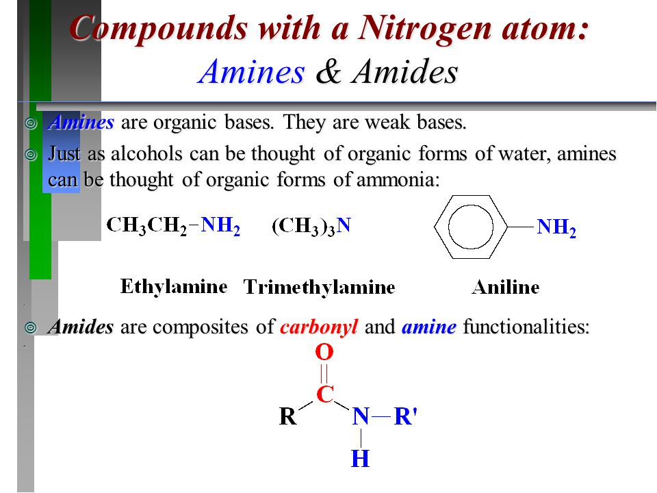 ¥ Amines are organic bases. They are weak bases. ¥ Just as alcohols can be thought of organic forms of water, amines can be thought of organic forms o