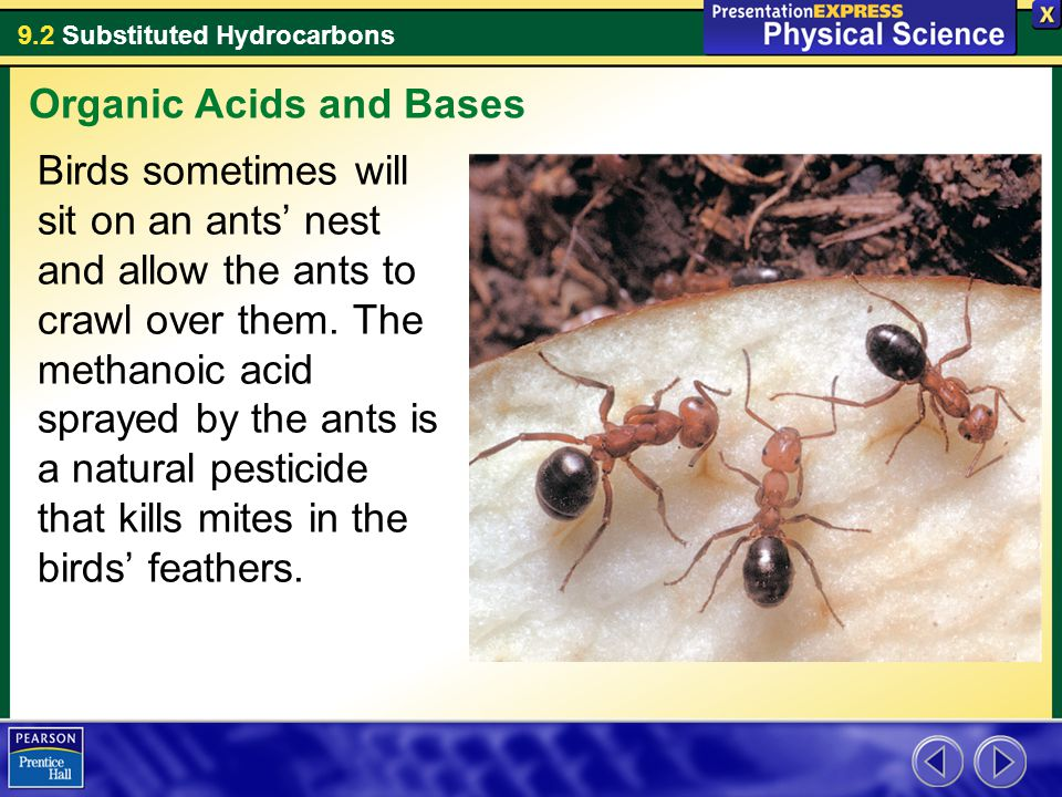 9.2 Substituted Hydrocarbons Birds sometimes will sit on an ants' nest and allow the ants to crawl over them. The methanoic acid sprayed by the ants i