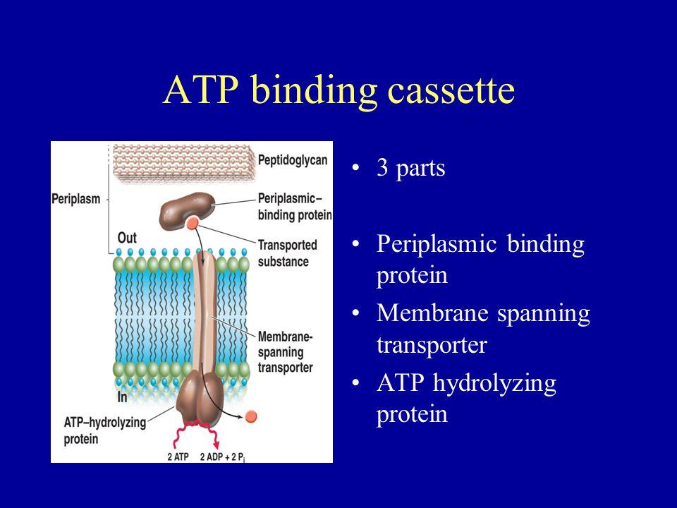 ATP binding cassette 3 parts Periplasmic binding protein Membrane spanning transporter ATP hydrolyzing protein