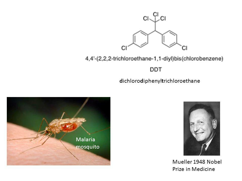 Mueller 1948 Nobel Prize in Medicine dichlorodiphenyltrichloroethane Malaria mosquito