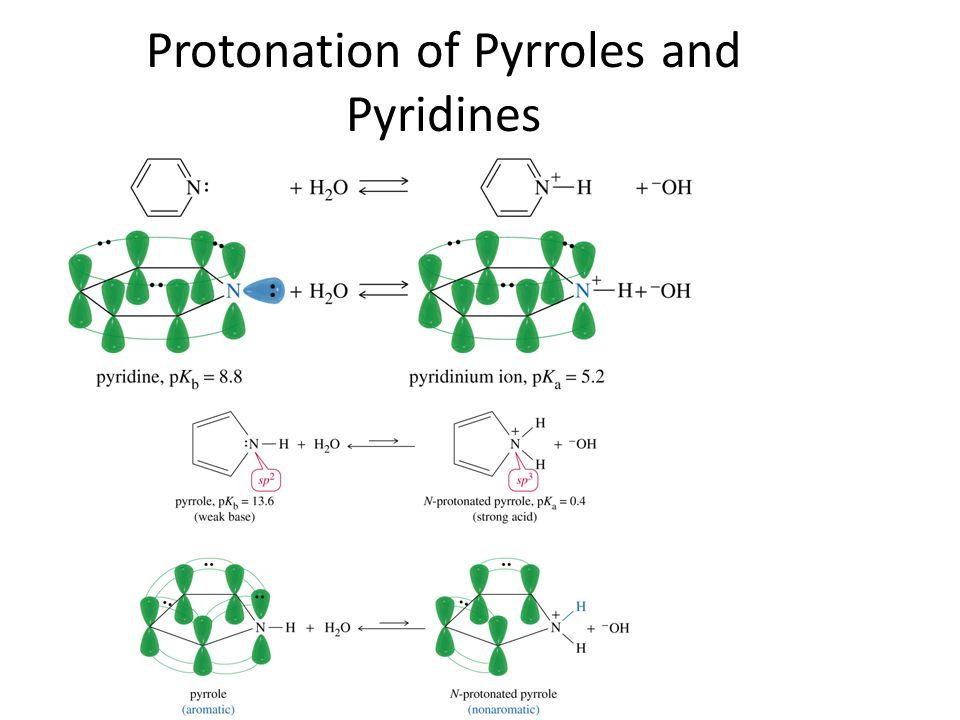 Protonation of Pyrroles and Pyridines