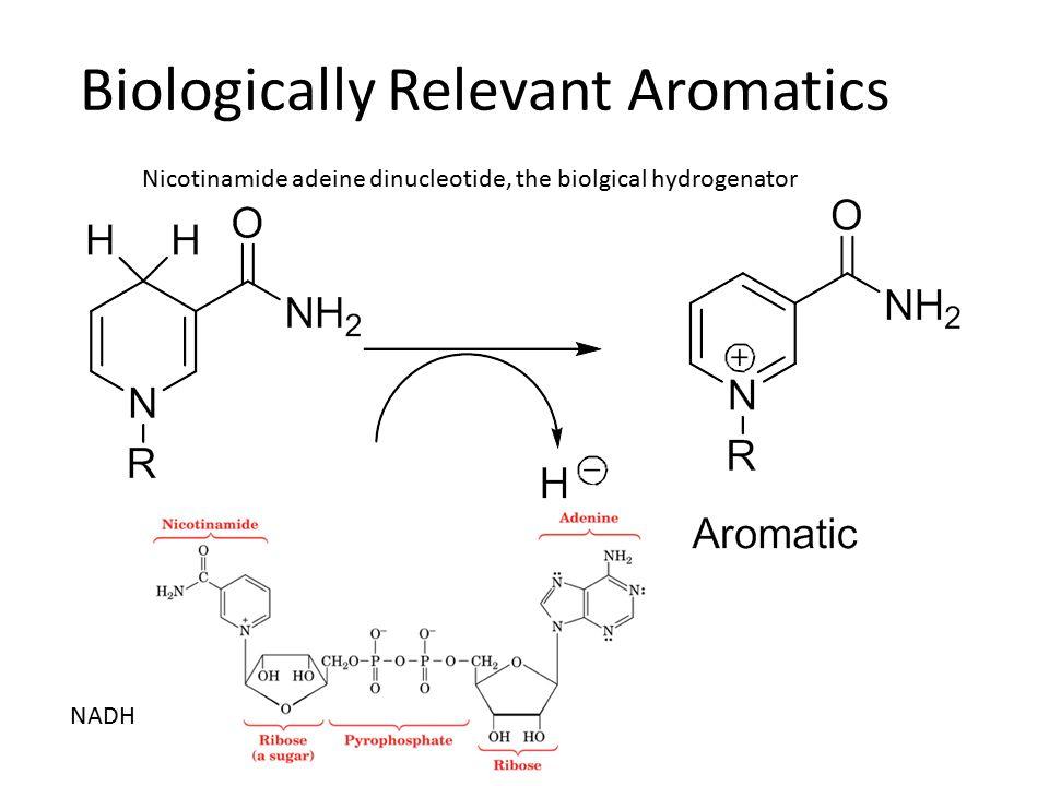 Biologically Relevant Aromatics NADH NAD+ Nicotinamide adeine dinucleotide, the biolgical hydrogenator