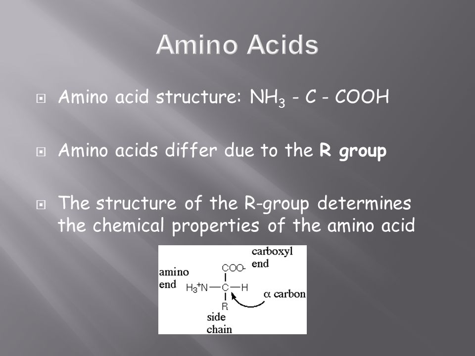  Amino acid structure: NH 3 - C - COOH  Amino acids differ due to the R group  The structure of the R-group determines the chemical properties of the amino acid