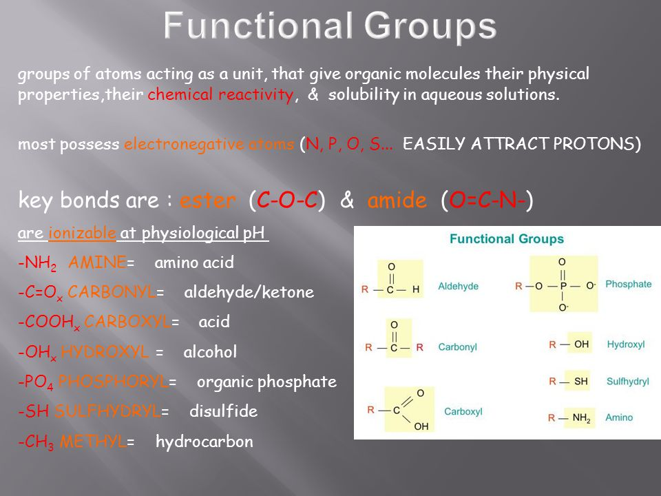 groups of atoms acting as a unit, that give organic molecules their physical properties,their chemical reactivity, & solubility in aqueous solutions.