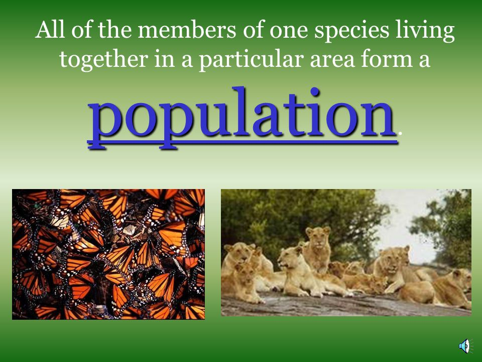 The smallest unit in an ecosystem is an organisms.