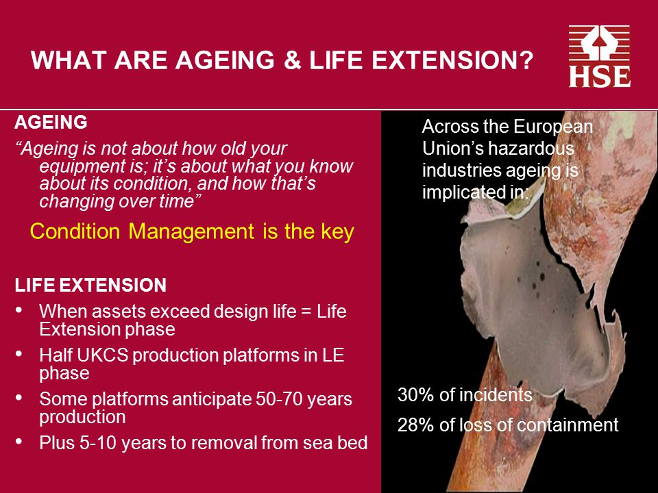WHAT ARE AGEING & LIFE EXTENSION.