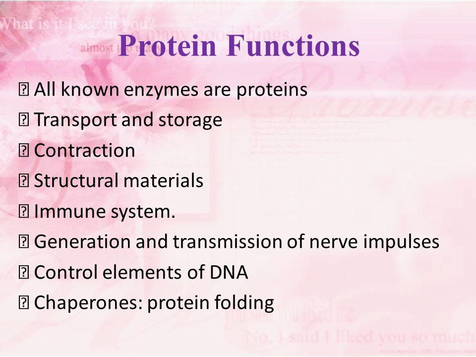 Protein Functions  All known enzymes are proteins  Transport and storage  Contraction  Structural materials  Immune system.