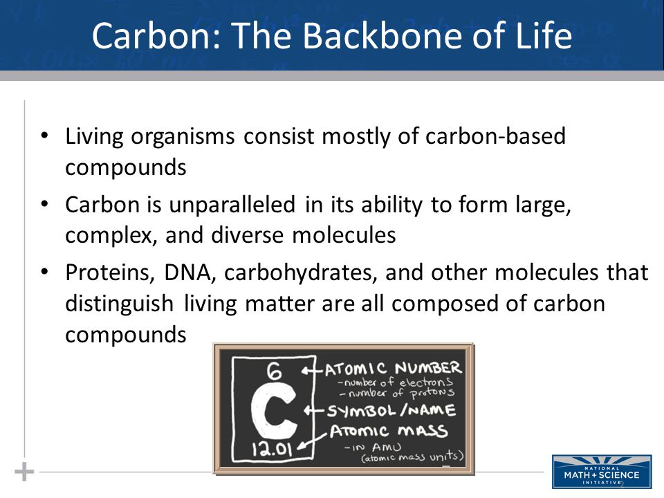 Carbon: The Backbone of Life Living organisms consist mostly of carbon-based compounds Carbon is unparalleled in its ability to form large, complex, a