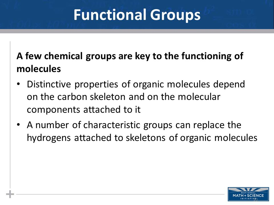 Functional Groups A few chemical groups are key to the functioning of molecules Distinctive properties of organic molecules depend on the carbon skele