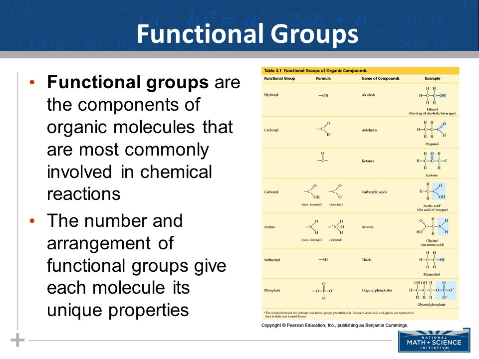 Functional groups are the components of organic molecules that are most commonly involved in chemical reactions The number and arrangement of function