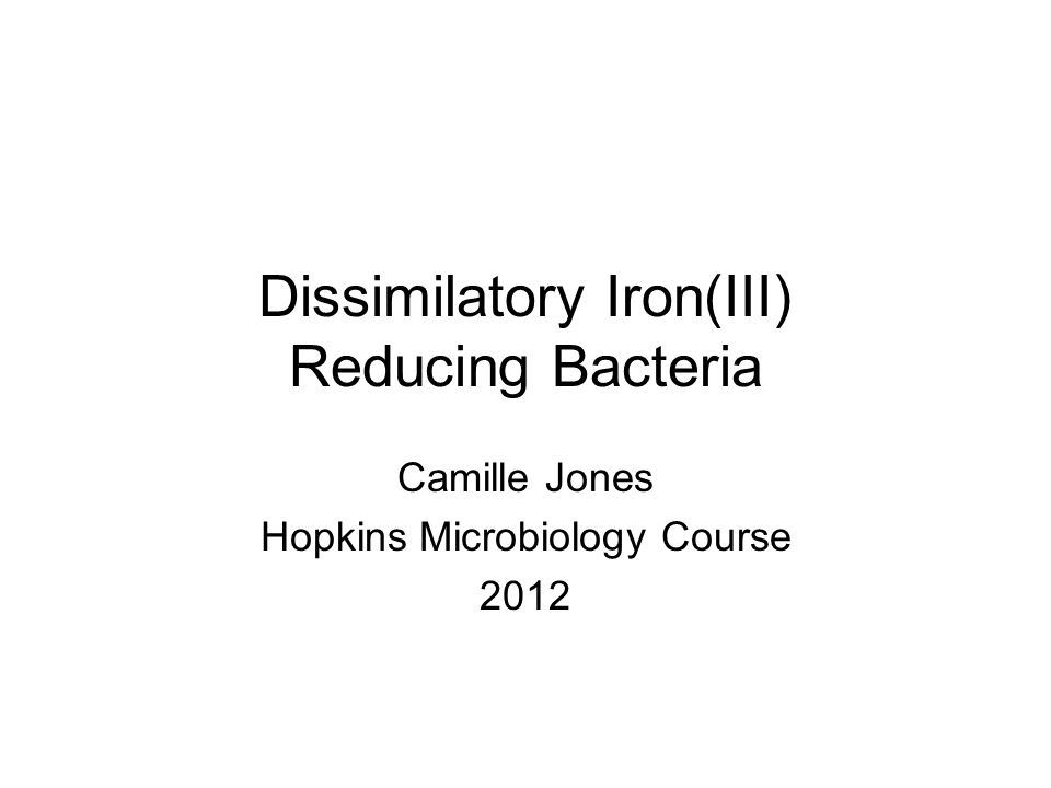 Dissimilatory Iron(III) Reducing Bacteria Camille Jones Hopkins Microbiology Course 2012
