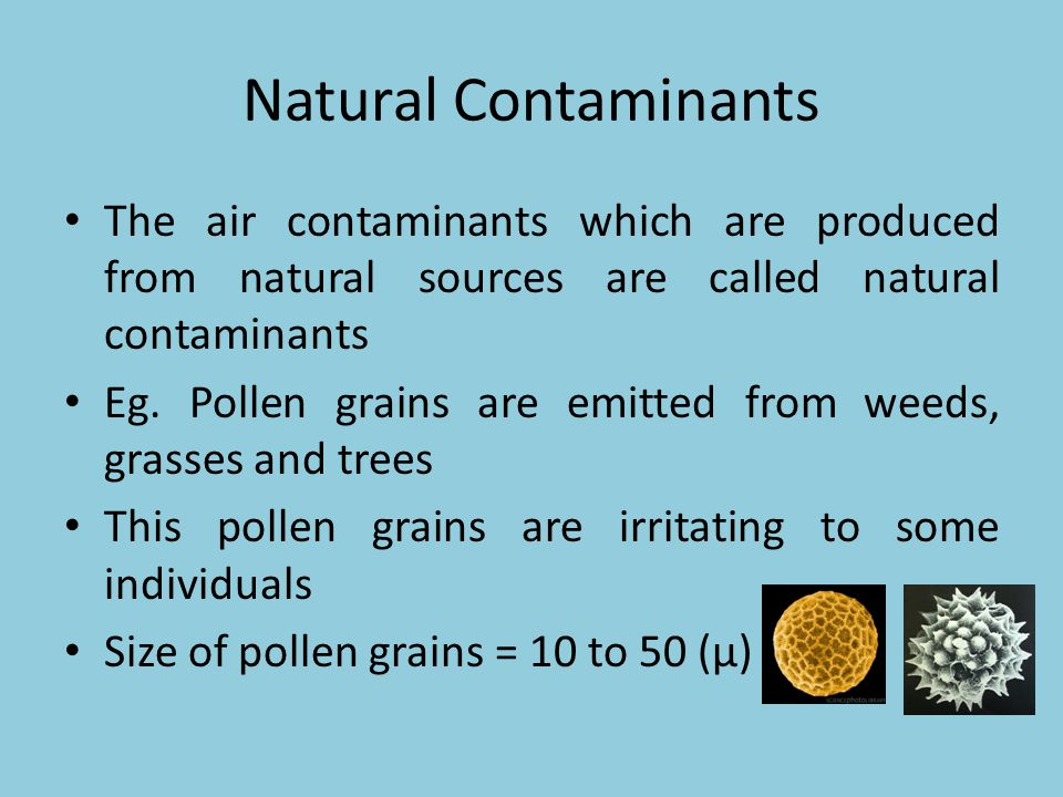 Natural Contaminants The air contaminants which are produced from natural sources are called natural contaminants Eg. Pollen grains are emitted from w